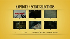 Scene selections